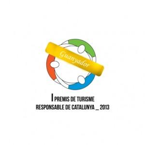 logo-rtd7-p